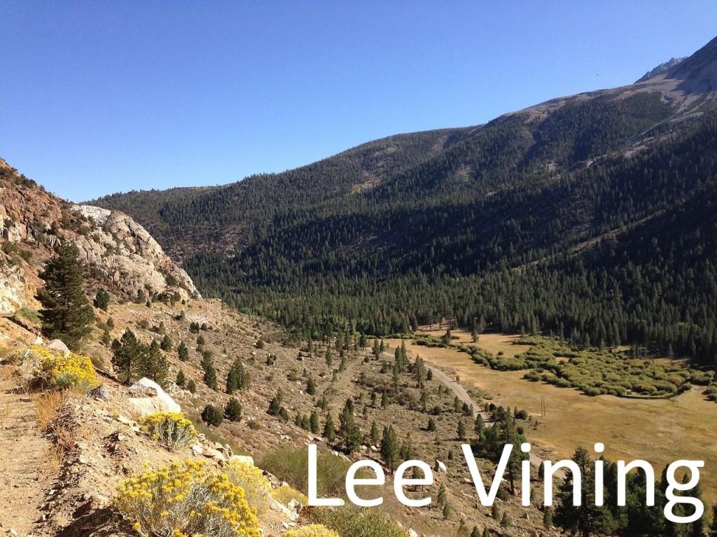 Lee Vinning